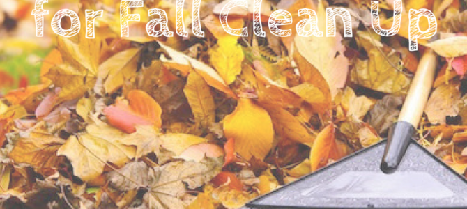 Safe Spine Tips for Fall Clean Up